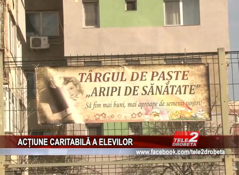ACȚIUNECARITABILĂA ELEVILOR