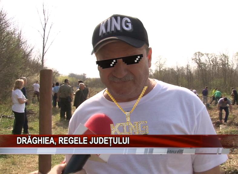 DRĂGHIEA, REGELE JUDEȚULUI