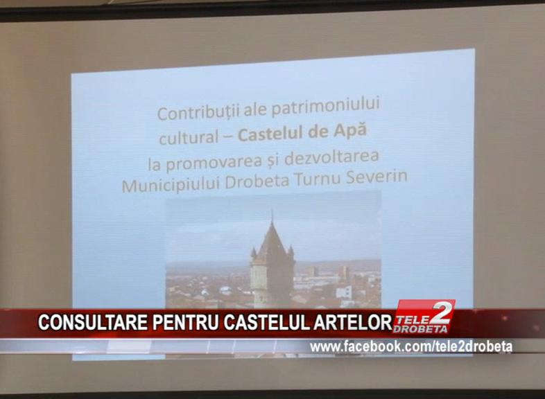 CONSULTARE PENTRU CASTELUL ARTELOR
