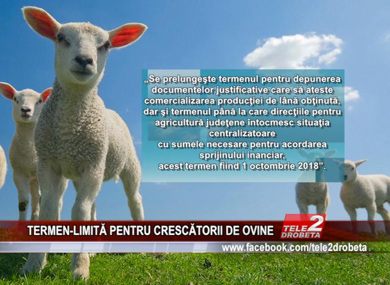 TERMEN-LIMITĂ PENTRU CRESCĂTORII DE OVINE