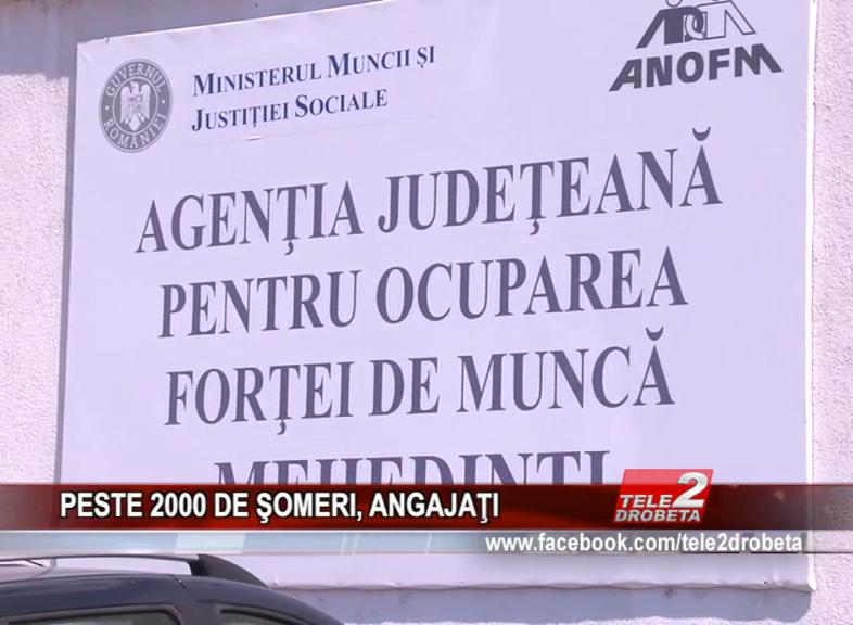 PESTE 2000 DE ŞOMERI, ANGAJAŢI