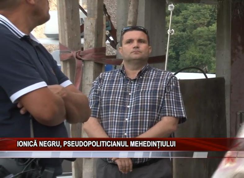 IONICĂ NEGRU, PSEUDOPOLITICIANUL MEHEDINȚIULUI
