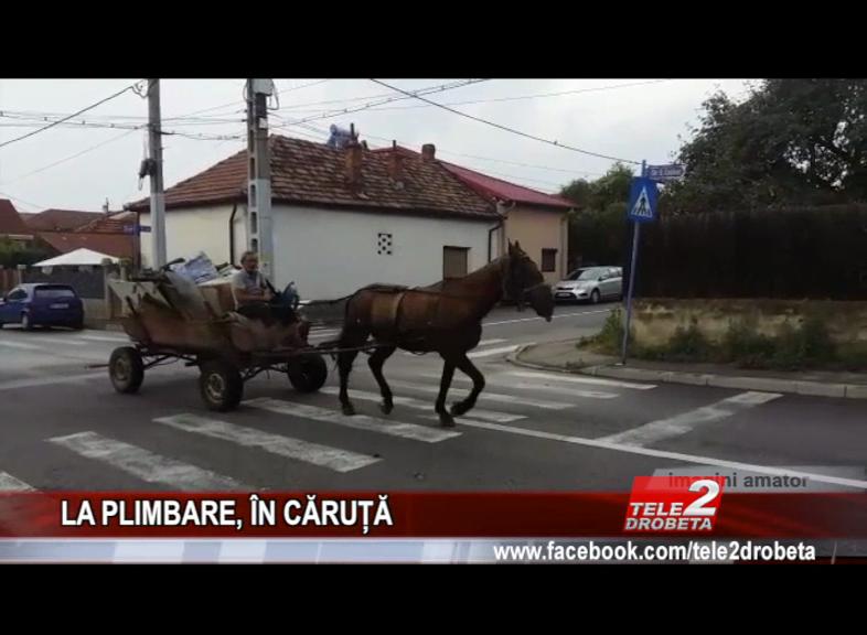 LA PLIMBARE, ÎN CĂRUȚĂ