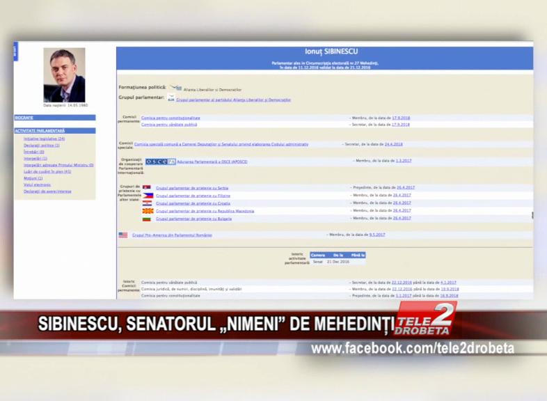 """SIBINESCU, SENATORUL """"NIMENI"""" DE MEHEDINȚI"""
