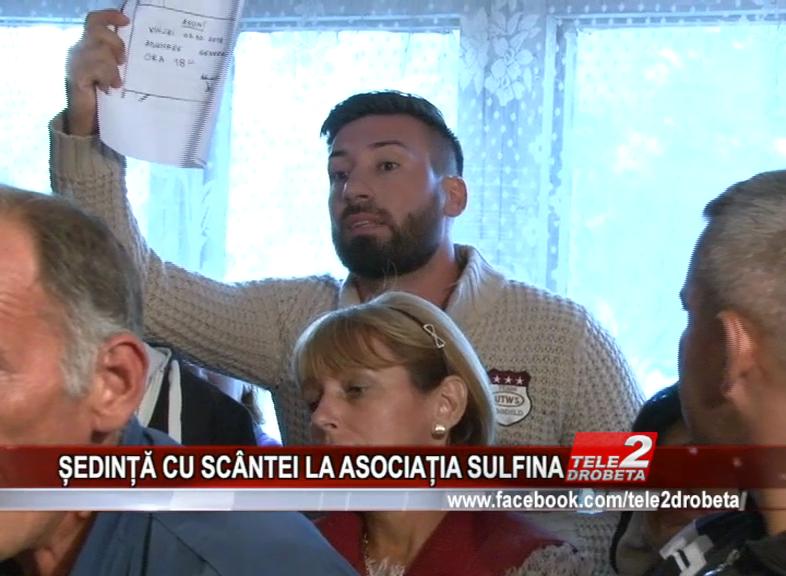 ȘEDINȚĂ CU SCÂNTEI LA ASOCIAȚIA SULFINA