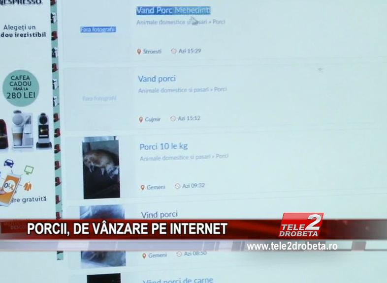 PORCII, DE VÂNZARE PE INTERNET