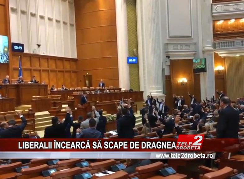 LIBERALII ÎNCEARCĂ SĂ SCAPE DE DRAGNEA