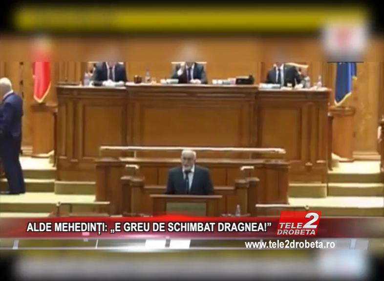"""ALDE MEHEDINȚI: """"E GREU DE SCHIMBAT DRAGNEA!"""""""