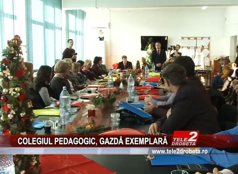 COLEGIUL PEDAGOGIC, GAZDĂ EXEMPLARĂ