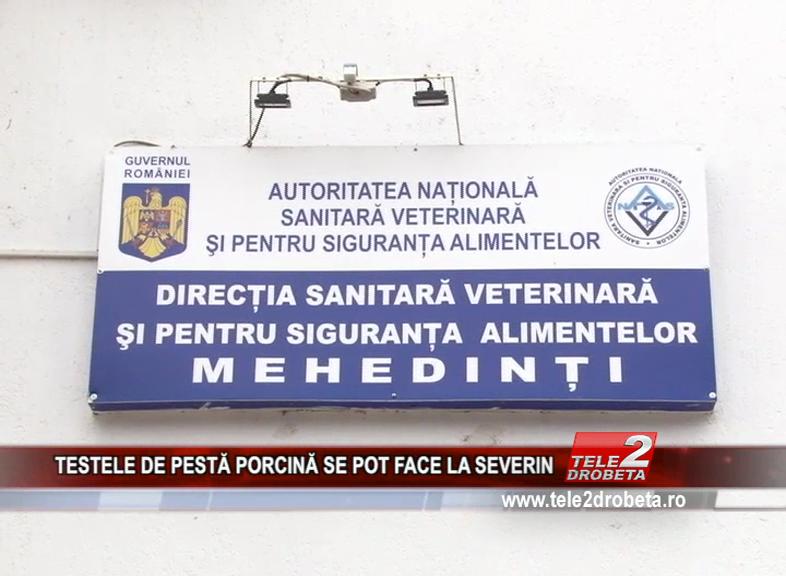 TESTELE DE PESTĂ PORCINĂ SE POT FACE LA SEVERIN