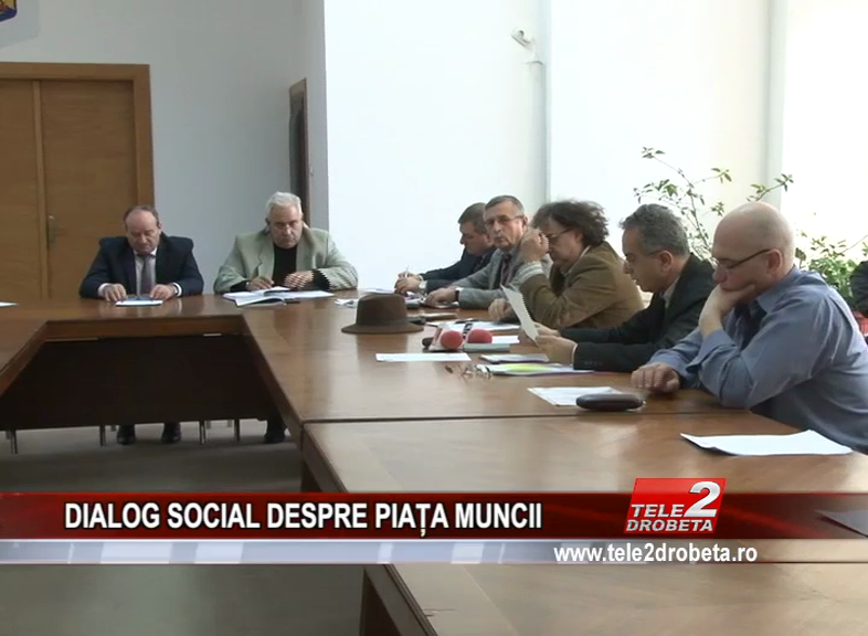 DIALOG SOCIAL DESPRE PIAȚA MUNCII