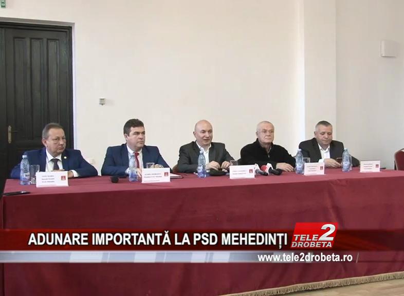 ADUNARE IMPORTANTĂ LA PSD MEHEDINȚI