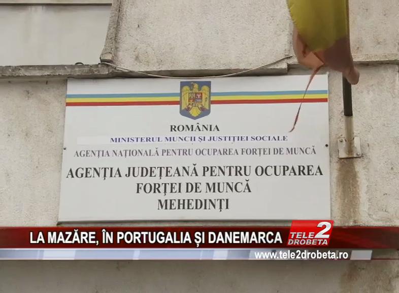 LA MAZĂRE, ÎN PORTUGALIA ȘI DANEMARCA