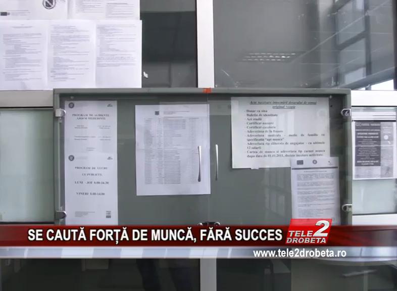 SE CAUTĂ FORȚĂ DE MUNCĂ, FĂRĂ SUCCES