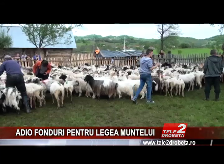 ADIO FONDURI PENTRU LEGEA MUNTELUI