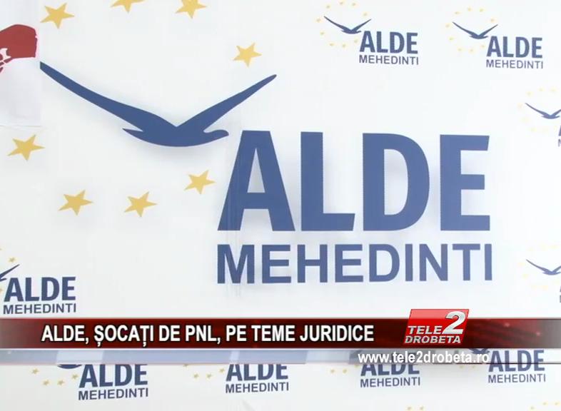 ALDE, ȘOCAȚI DE PNL, PE TEME JURIDICE