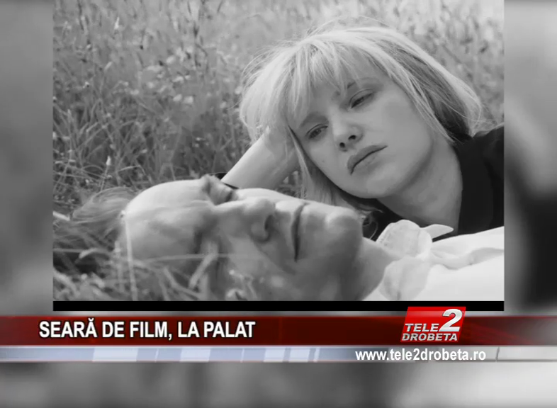 SEARĂ DE FILM, LA PALAT