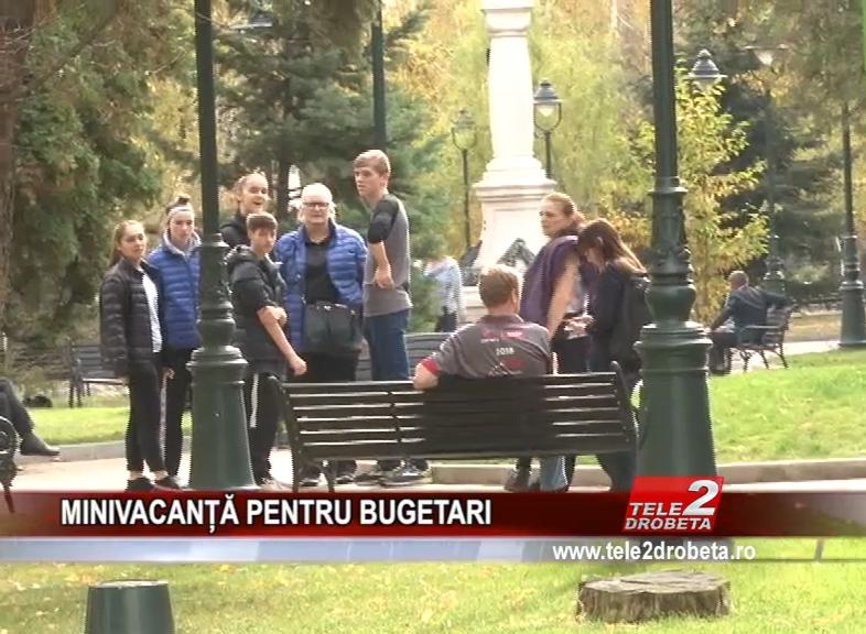 MINIVACANȚĂ PENTRU BUGETARI