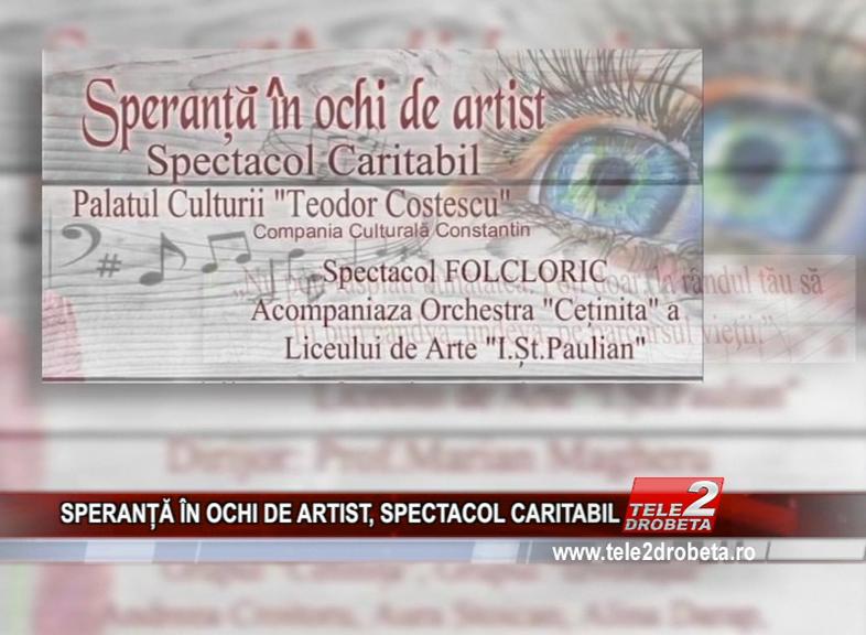 SPERANȚĂ ÎN OCHI DE ARTIST, SPECTACOL CARITABIL