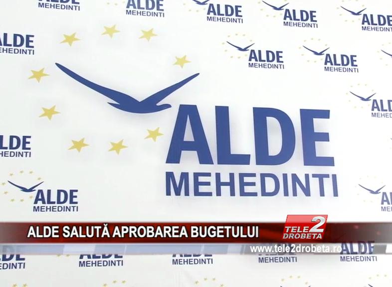 ALDE SALUTĂ APROBAREA BUGETULUI