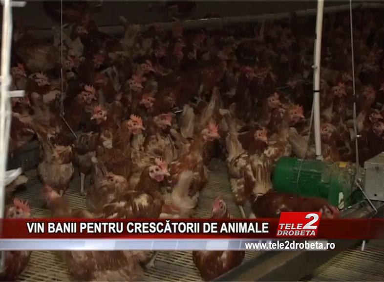 VIN BANII PENTRU CRESCĂTORII DE ANIMALE