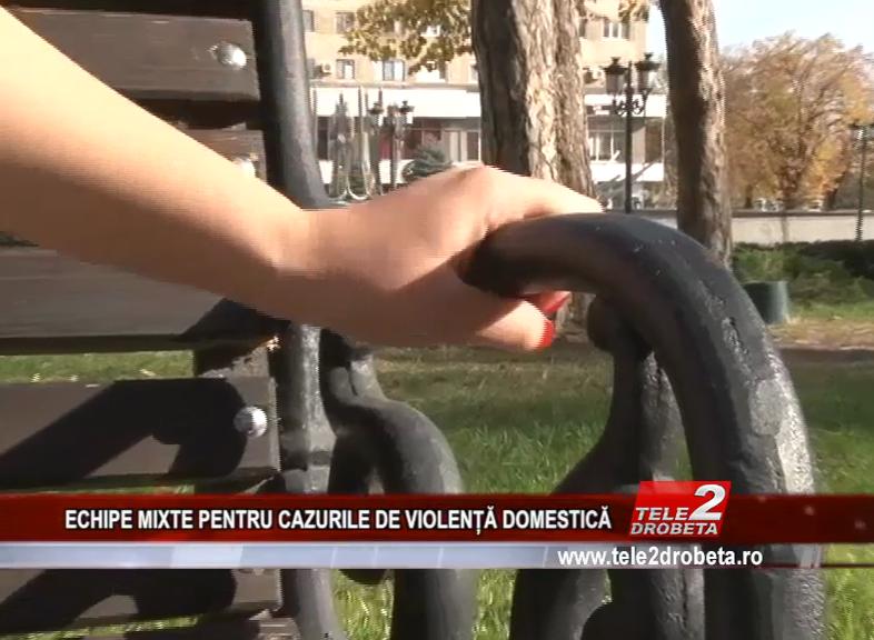 ECHIPE MIXTE PENTRU CAZURILE DE VIOLENȚĂ DOMESTICĂ