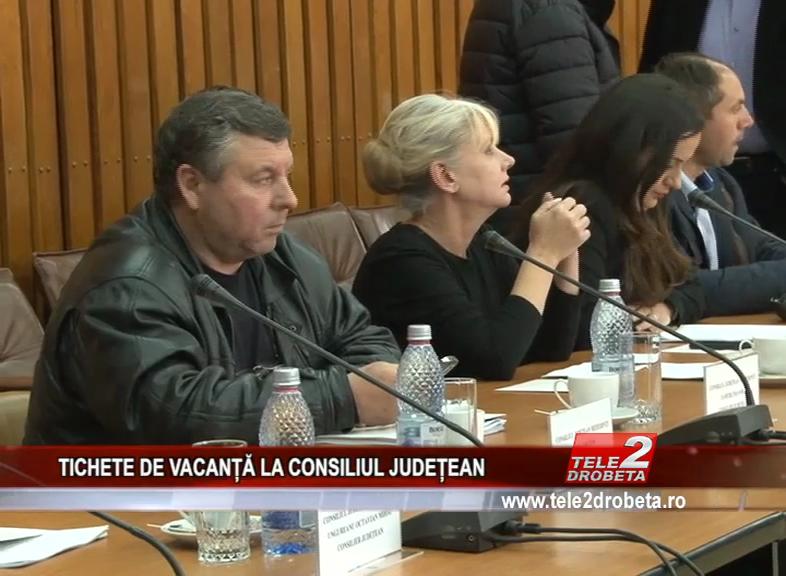 TICHETE DE VACANȚĂ LA CONSILIUL JUDEȚEAN