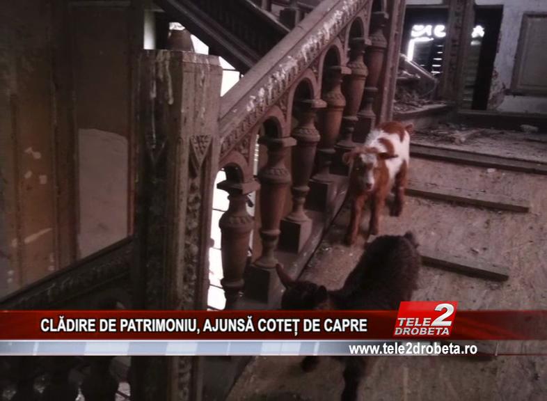 CLADIRE DE PATRIMONIU, AJUNSA COTET DE CAPRE
