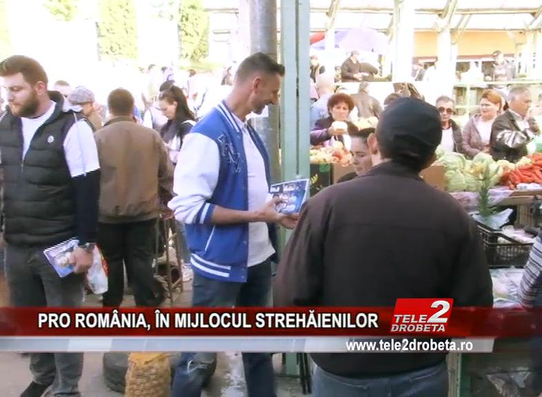 PRO ROMÂNIA, ÎN MIJLOCUL STREHĂIENILOR