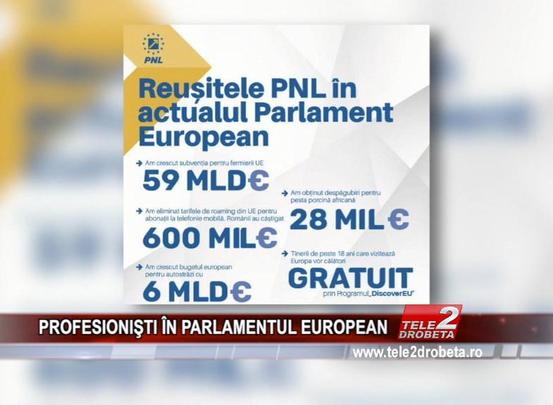 PROFESIONIŞTI ÎN PARLAMENTUL EUROPEAN