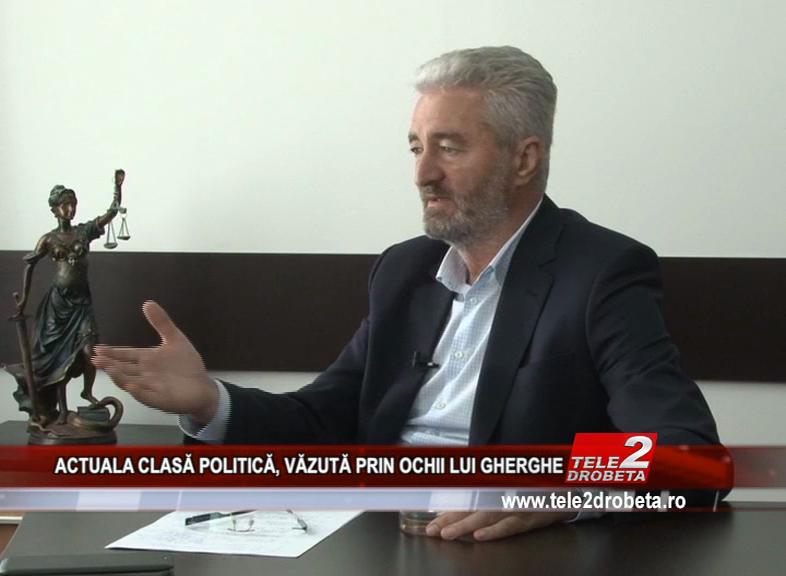 ACTUALA CLASĂ POLITICĂ, VĂZUTĂ PRIN OCHII LUI GHERGHE