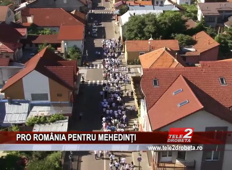 PRO ROMÂNIA PENTRU MEHEDINȚI