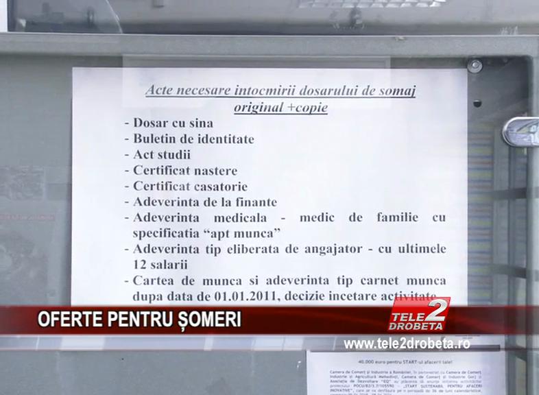 OFERTE PENTRU ȘOMERI