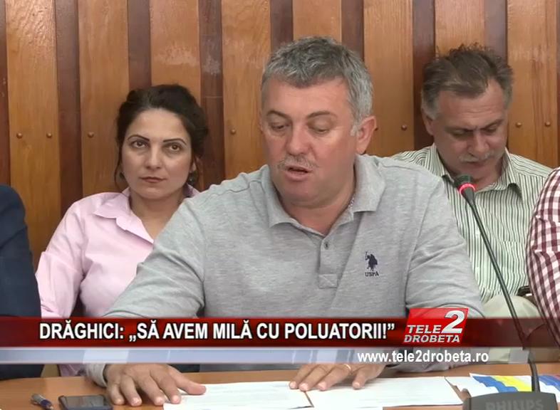 """DRĂGHICI: """"SĂ AVEM MILĂ CU POLUATORII!"""""""