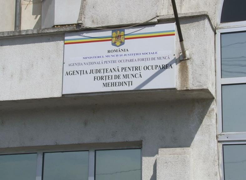 OFERTĂ DE MUNCĂ BOGATĂ, PENTRU MEHEDINȚENI