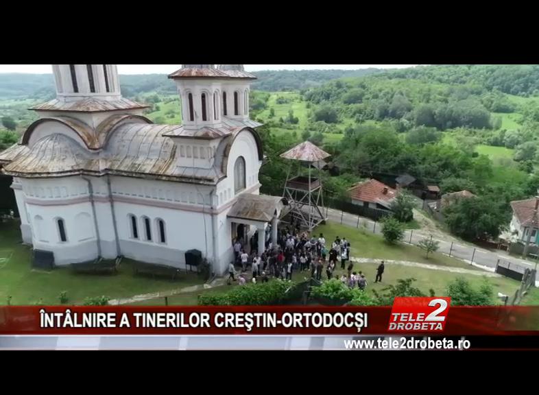 ÎNTÂLNIRE A TINERILOR CREŞTIN-ORTODOCȘI