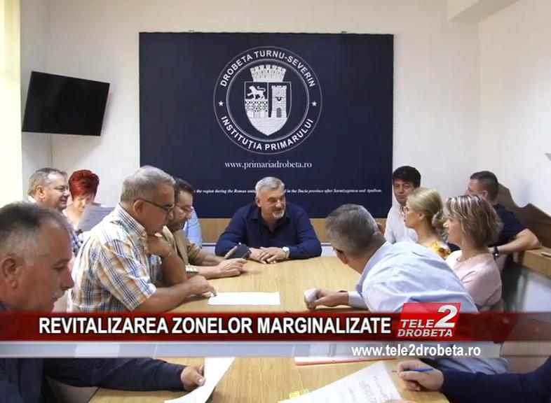 REVITALIZAREA ZONELOR MARGINALIZATE