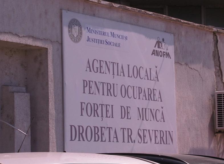 OFERTĂ ESTE, SE CAUTĂ FORȚĂ DE MUNCĂ