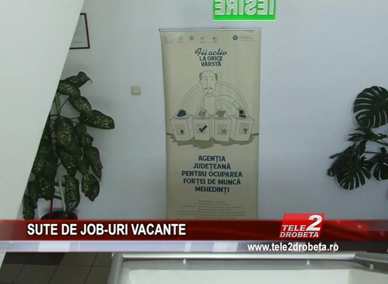 SUTE DE JOB-URI VACANTE