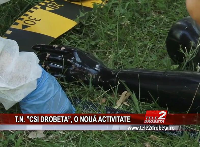 "T.N. ""CSI DROBETA"", O NOUA ACTIVITATE"