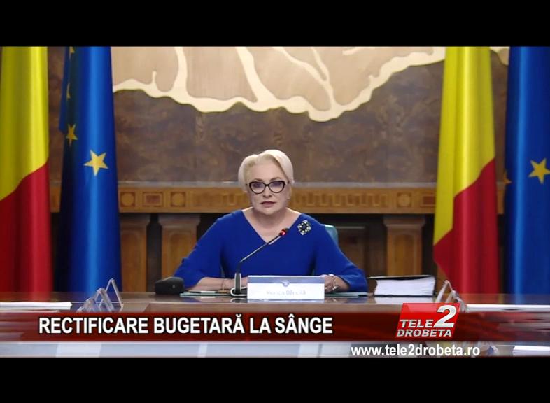 RECTIFICARE BUGETARĂ LA SÂNGE