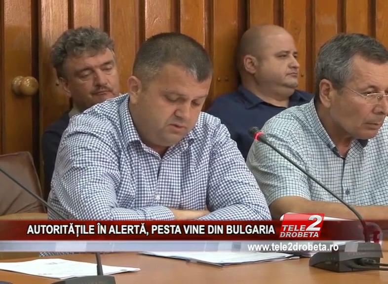 AUTORITĂȚILE ÎN ALERTĂ, PESTA VINE DIN BULGARIA