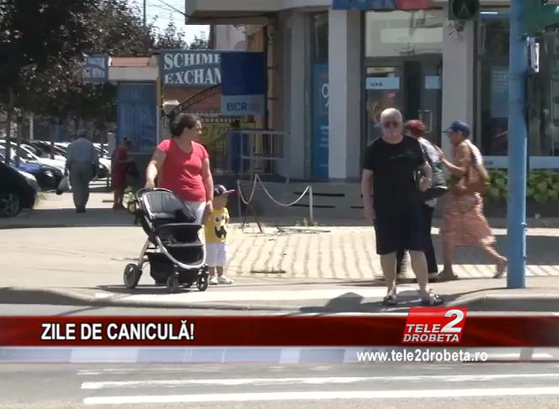 ZILE DE CANICULA!