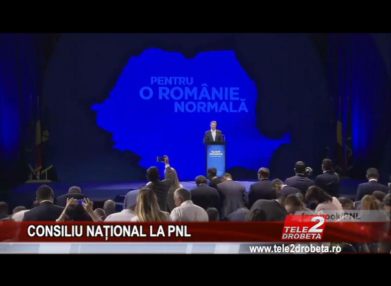 CONSILIU NAȚIONAL LA PNL