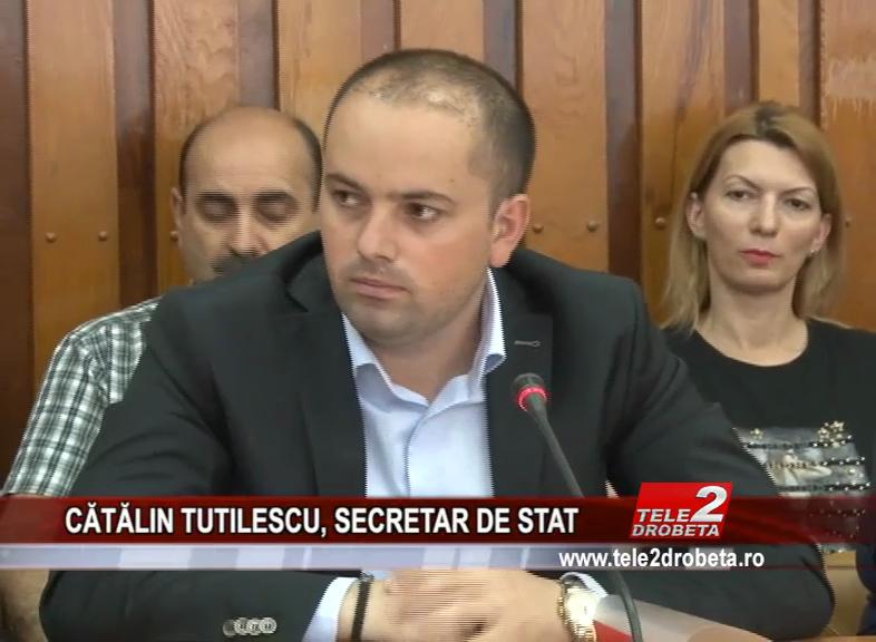 CĂTĂLIN TUTILESCU, SECRETAR DE STAT