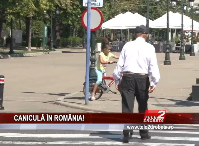 CANICULĂ ÎN ROMÂNIA!