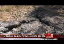 CÂMPURI PÂRJOLITE DE LA ATÂTA SECETĂ